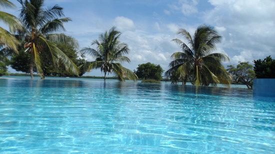 Blau Privilege Cayo Libertad Hotel: Piscina infinita