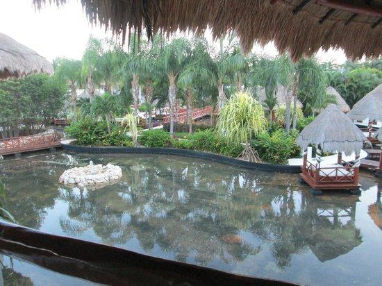 Grand Riviera Princess All Suites Resort & Spa: View from villa