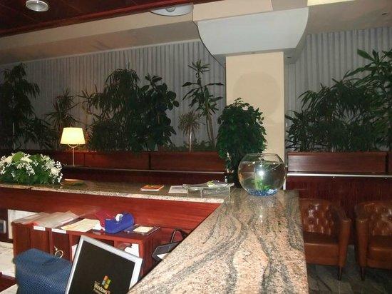 Jelena Hotel: Reception