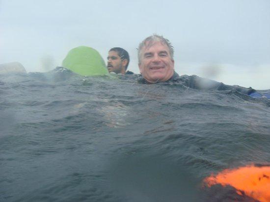Vallarta Undersea: Floating aimlessly