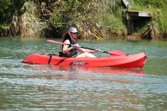 Raglan Scenic Tours: Come hire a kayak