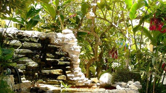 Villas Las Anclas : Entrance waterfall