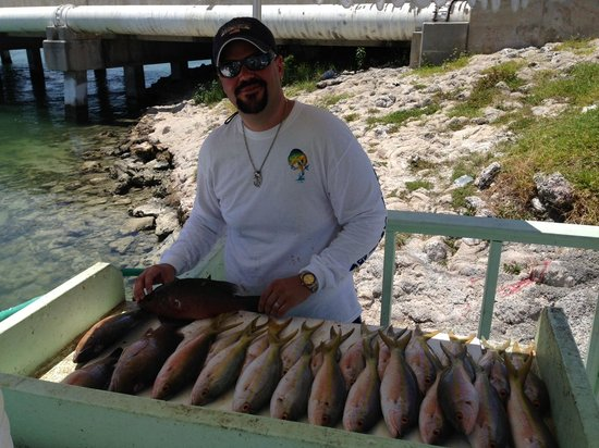 Miss Islamorada Charter Fishing: Yellow Tails and Mangroves