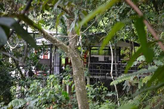 Rancho Pacifico : Our Treehaus for 6 days