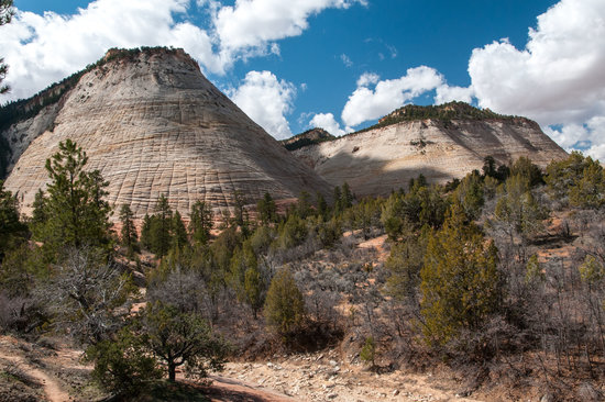 Checkerboard Mesa: Checkerboard and Another Nearby Mesa