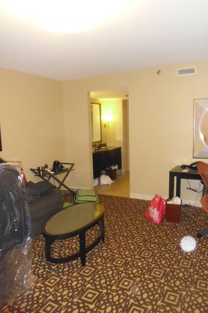 Doubletree by Hilton Detroit Downtown - Fort Shelby : Suite