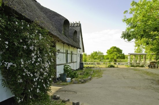 Cottage Farm Bed and Breakfast: The way in