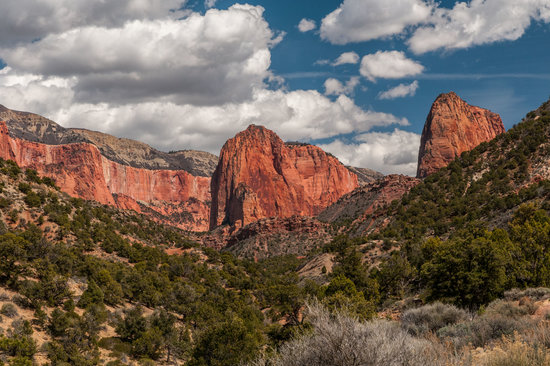 Kolob Canyon Road: View About Halfway Up the Road