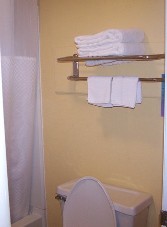 Travelodge Chattanooga/Hamilton Place: Towel Rack in Bathroom