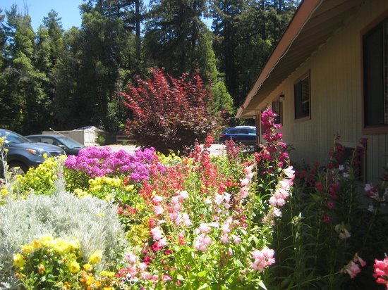 Northwood Lodge & Resort: office is at the far end of the flower beds