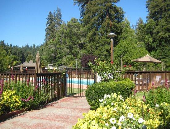 Northwood Lodge & Resort: pool area