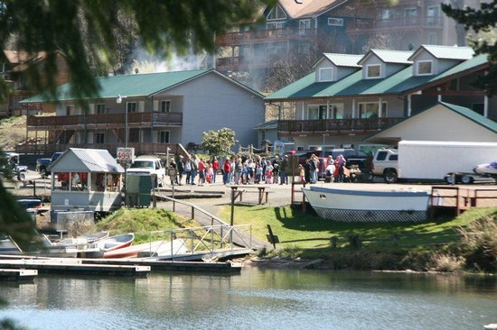Lake Mayfield Marina Resort Amp Rv Park Mossyrock Wa