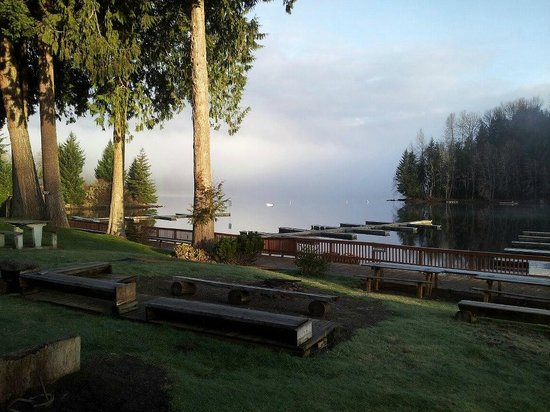 Lake Mayfield  Marina Resort & RV Park: Firepit area