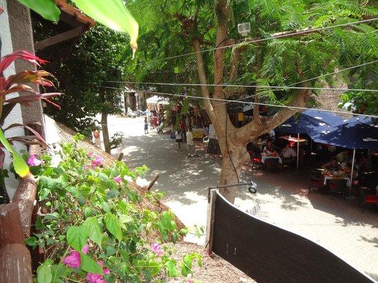 Hotel Boutique Posada Mariposa : 5ª Avenida