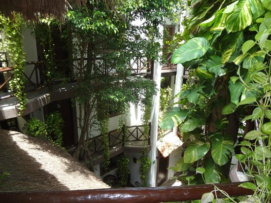 Hotel Boutique Posada Mariposa: Parte interna