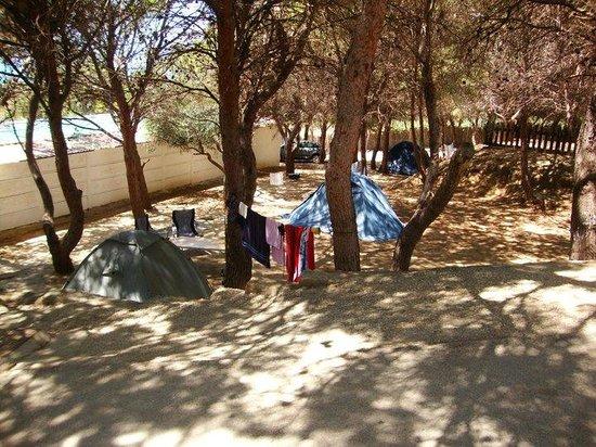 Camping Internazionale Nettuno: Camping