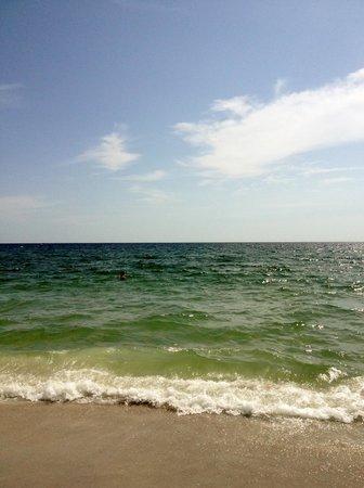 Manasota Key Beach : Waterside in Manasota Key