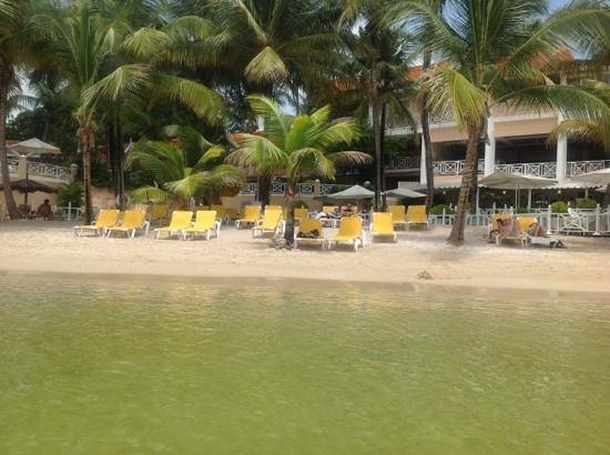 Coco Reef Resort & Spa Tobago: view of shore in front the hotel from the water