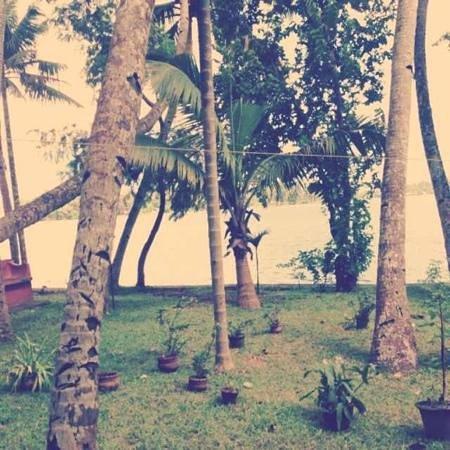 Ashtamudi Villas: garden