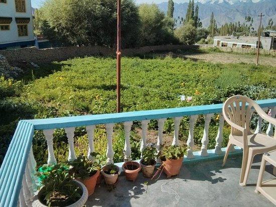 Lehling Guesthouse: Organic garden