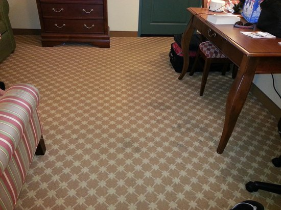 Country Inn & Suites by Radisson, Valparaiso, IN: stains on the carpet