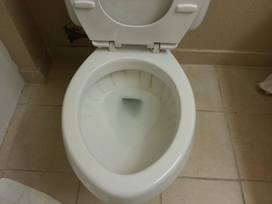 Country Inn & Suites By Carlson, Valparaiso: dirty toilet