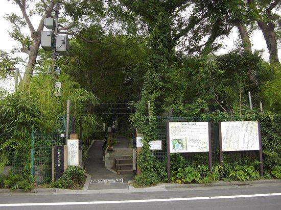 Sano Ikoinomori Ryokuchi