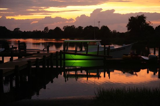 """The Inn at Tabbs Creek Waterfront B&B: Our small town version of """"Nigh Life""""...lots of stars and fish to see with our underwater fish l"""