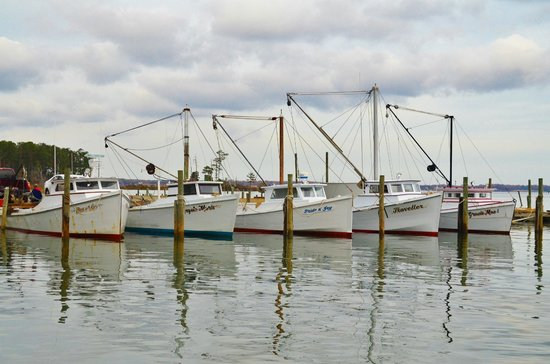 The Inn at Tabbs Creek Waterfront B&B: Mathews County, VA has more waterfront than any other along the Chesapeake Bay