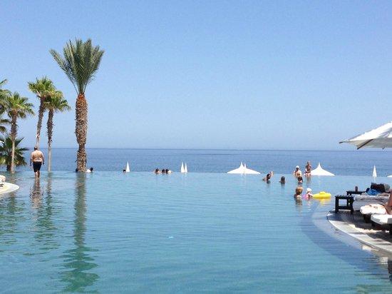 Hilton Los Cabos Beach & Golf Resort : infinity pool