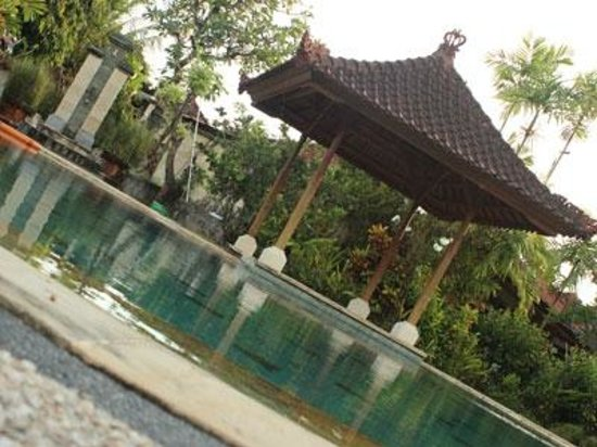 Sukun Bali Cottages: lovely pool