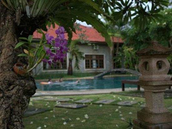 ซูคุน บาหลี คอทเทเจส: orchid garden