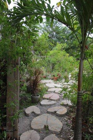 Amarela Resort: Cultivation area