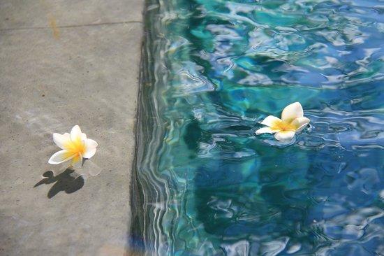 The Samaya Bali Seminyak : Fleurs de frangipanier quotidiennes