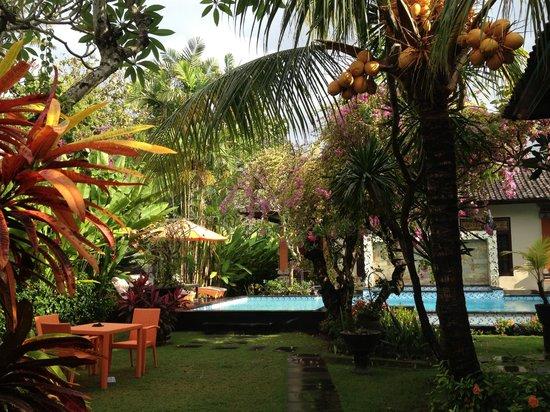 Tirta Ening Agung: Pool area