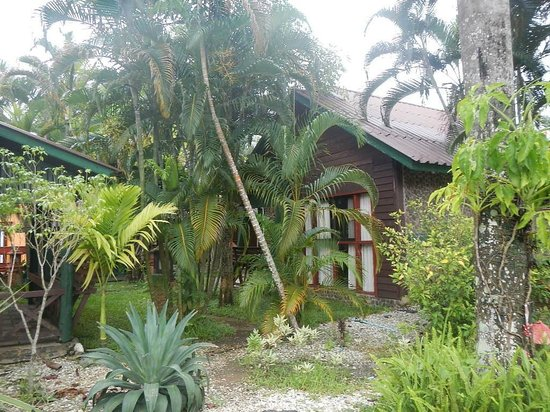 Silamanee Resort: houses are hidden in tropical garden