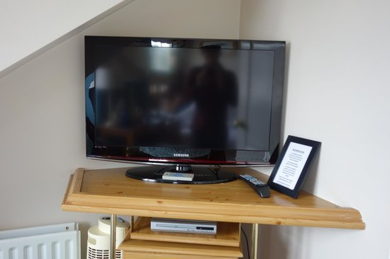 Forest Guest House: Large TV