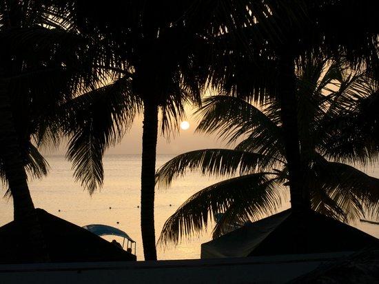 Bananarama Beach and Dive Resort: udsigt fra nr. 23