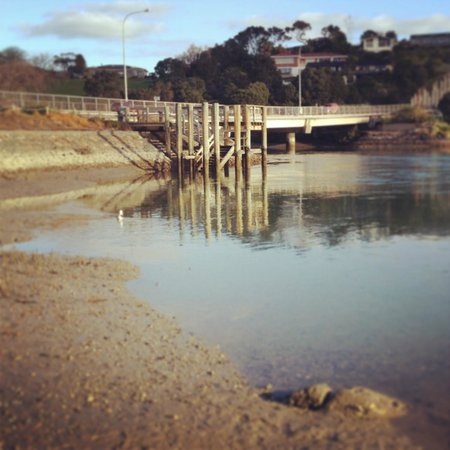 Orewa – Te Ara Tahuna Estuary Cycleway: Took me so long to walk that the tide had gone out significantly on my way back.
