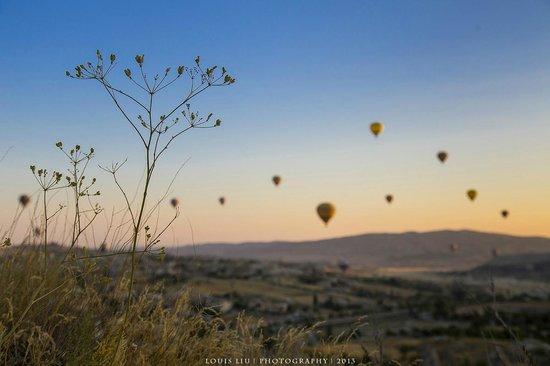 Pilot Inn: hot air balloon