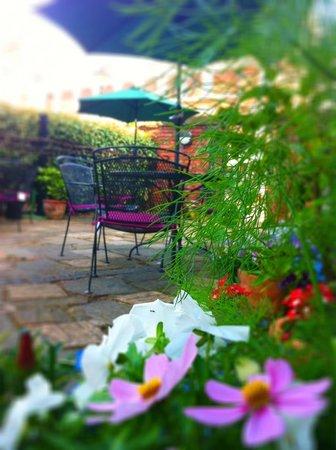 Blackburne House Cafe: The hidden gem off Hope St, our sunny terrace.