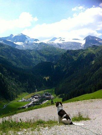 Hotel Alpenhof Hintertux: Gletscherblick 2012