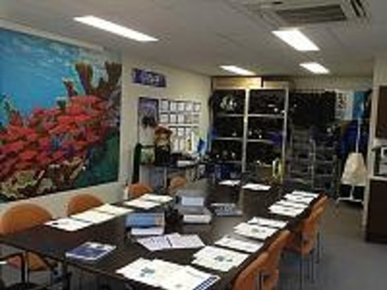 Fantasy Diving: Our Quirky Classroom