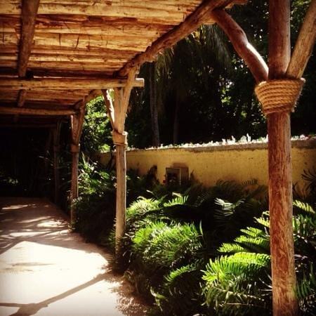 romantic covered walkways