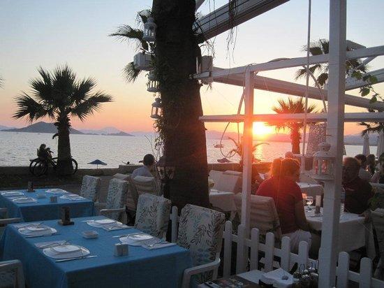 Kassaba Bar and Restaurant: View from the restaurant