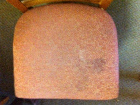 Staybridge Suites : Chair