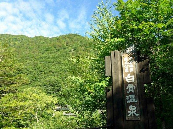 Shirahone Onsen: 白骨温泉・バス停近く