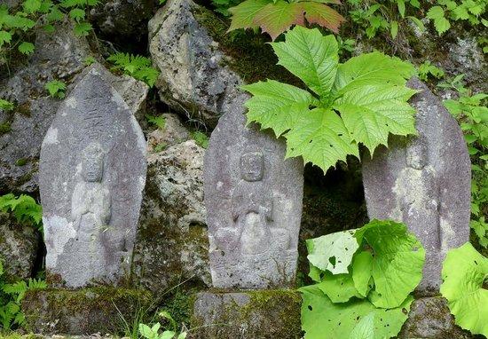 Shirahone Onsen: 滝、三十三観音