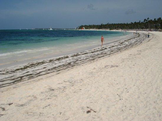 The Reserve at Paradisus Palma Real: Playa Paradisus Palma Real