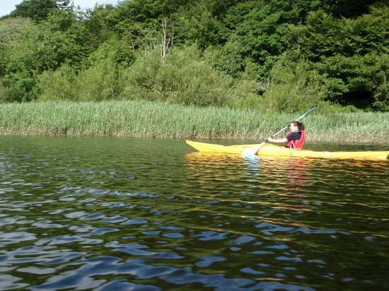Paddle & Pedal: Gliding along in the sunshine